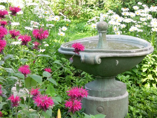 Water fountain among the Daisies and bee balm