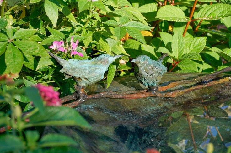 Birdbaths-63